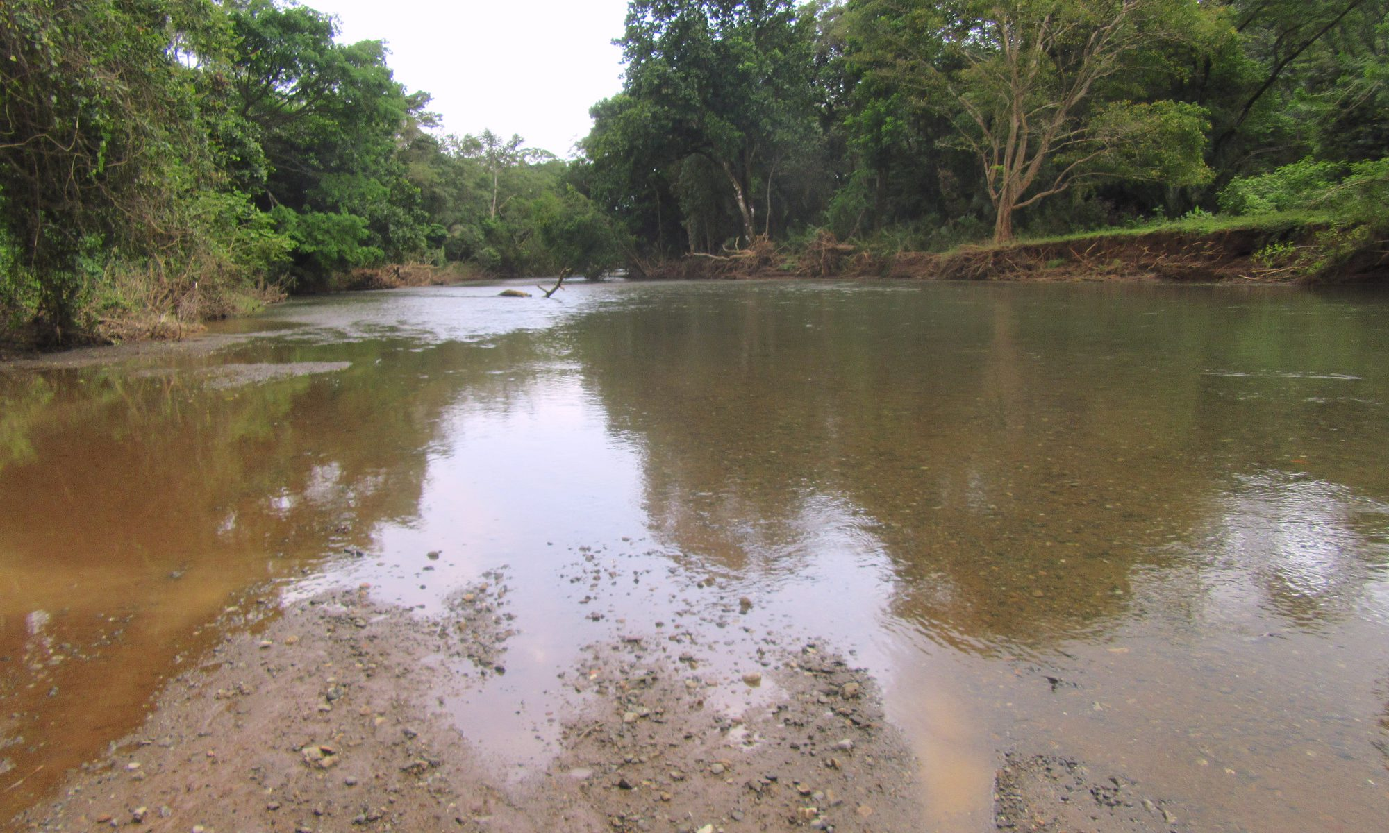 Fluss Buena Vista Samara