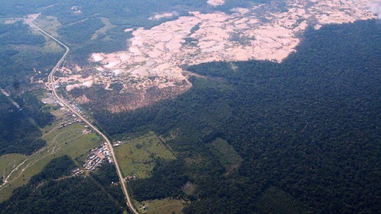 Abholzung Amazonas