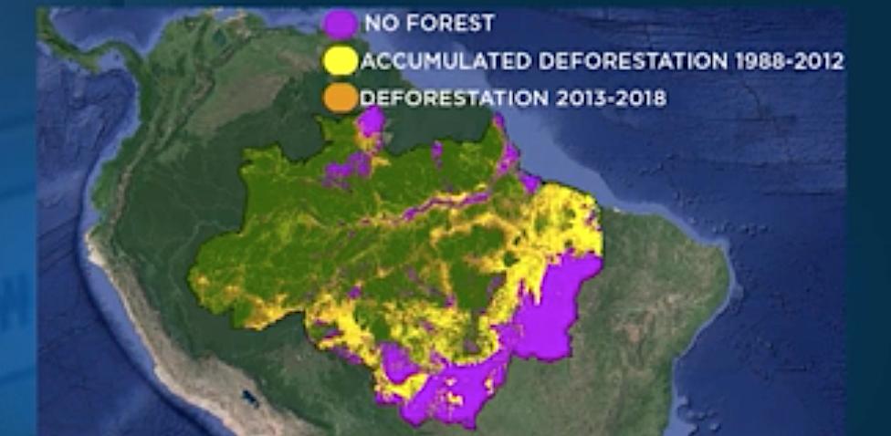 Klima und Regenwald