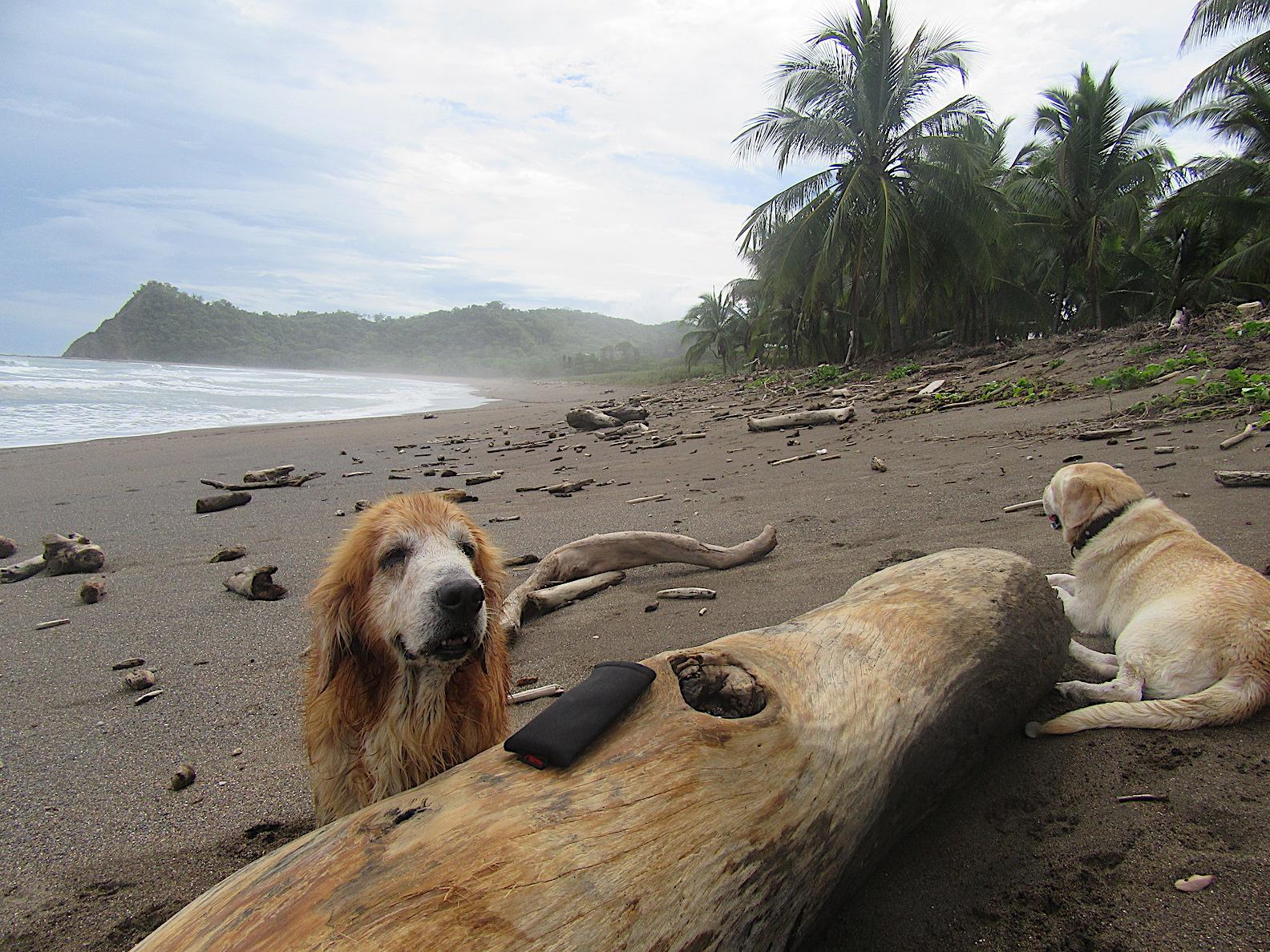 Beste Strände Costa Ricas